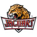 IUPUI Logo