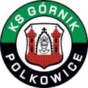 KS Górnik Polkowice Franchise Logo