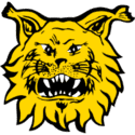 Ilves Club Crest