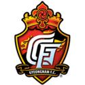 Gyeongnam Club Crest