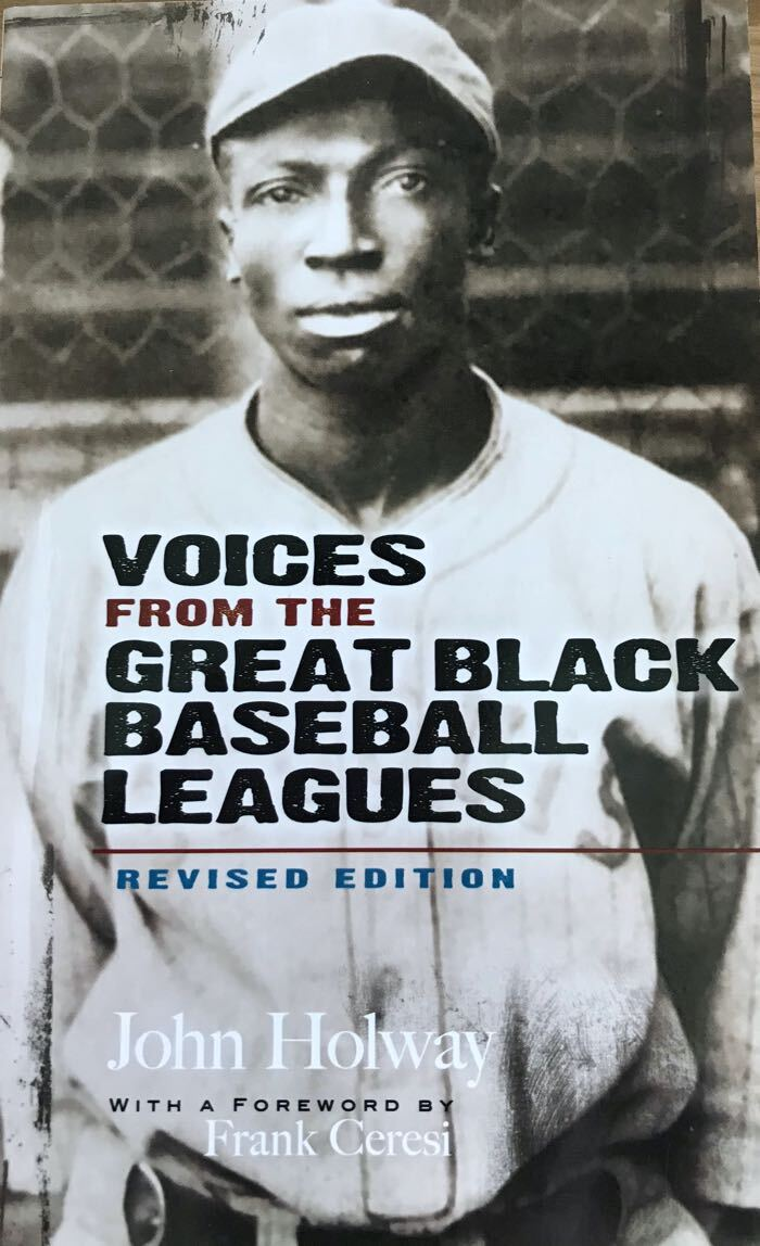 Cover of Voices from the Great Black Baseball Leagues